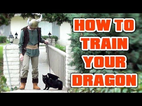 how to train your dragon parody