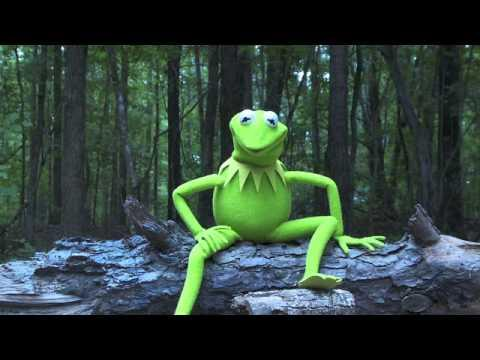 Kermit The Frog From Muppets Takes The ALS Ice Bucket Challenge