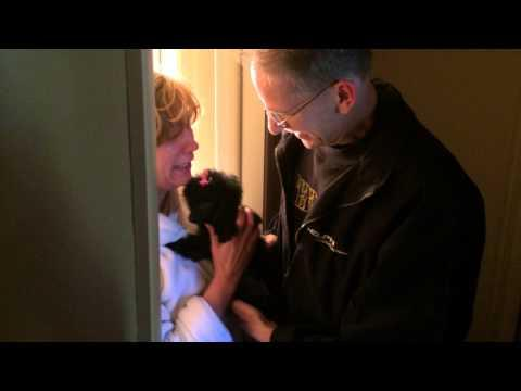 Family Surprised With A Dog