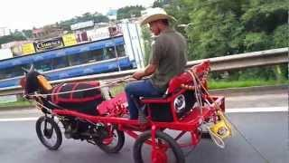 Motorcycle And Horse Buggy Hybrid