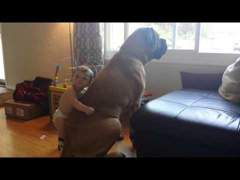 Baby Boy Gives His Dog A Hug