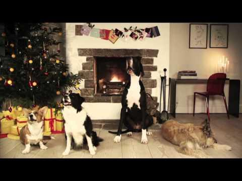 Cute - Dogs Bark Jingle Bell Song