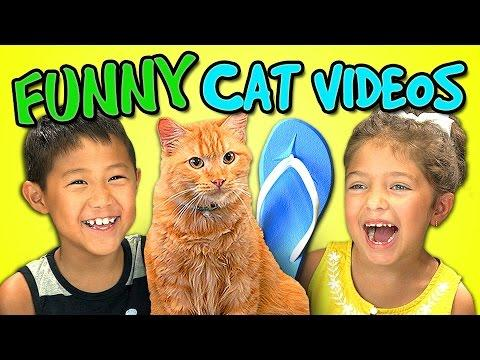 Funny Kids Reaction To Cat Videos