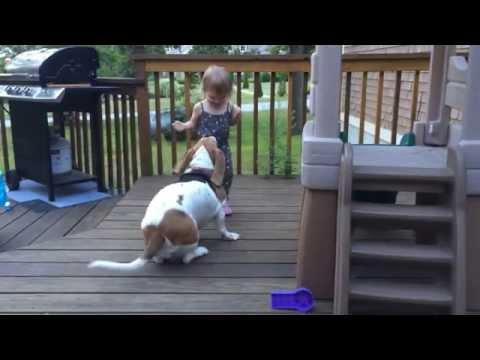Cute Baby Girl Vs The Playful Dog