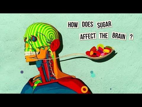 Sugar's Affect On The Brain