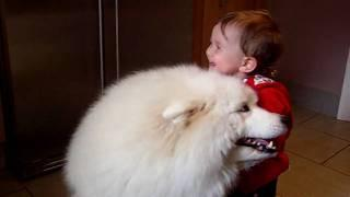 Baby Girl Hugs The Dog