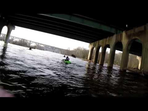 Kayaker Vs Goose