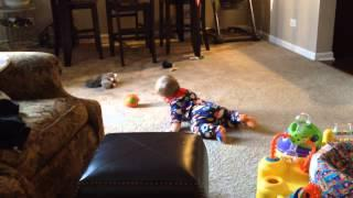 Dog Takes The Toy Away From Baby
