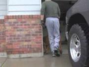 Man Treats His Paraplegic Dog Like His Son