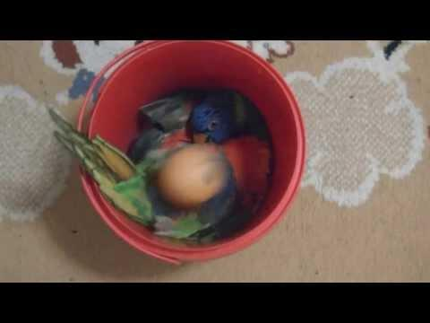 Cute Bird Loves To Play With Ping Pong Ball