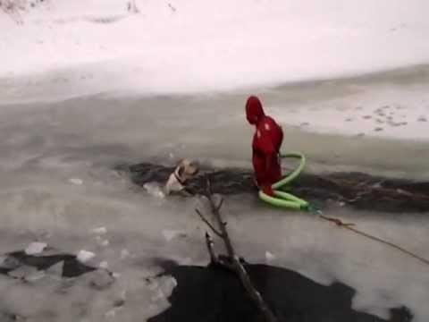 Amazing - Firefighters Rescue A Dog From Icy Waters