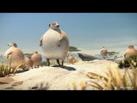 Obese Meerkats