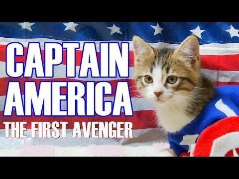 Captain America Movie Reenacted By Kittens