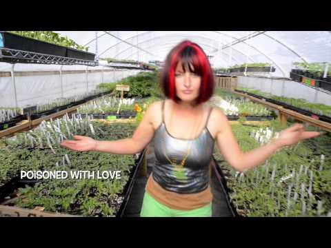 Funny Song To Promote A Plant Farm