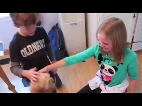 Kids Start Crying After Being Surprised With A Puppy