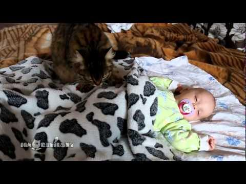 Cat Massages The Sleeping Baby
