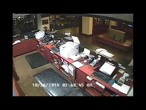 Deer Goes Running Inside The Penn State Hotel