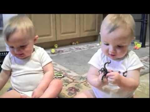 cute twin babies laugh at fake sneeze