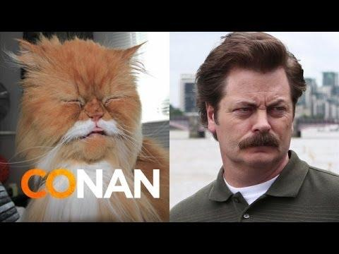 Conan Shares Cats That Look Like Nick Offerman