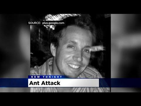 California Highway Patrol Officer Saves Man's Life After An Ant Attack