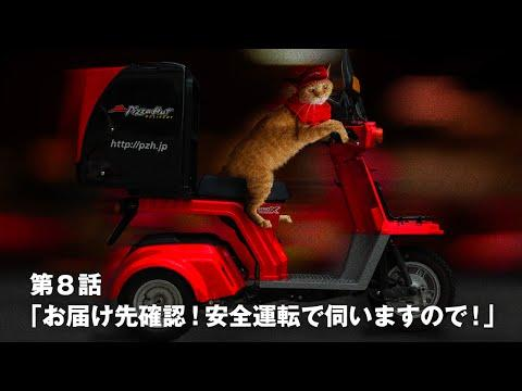 Cat's Delivery Job At A Pizza Place In Japan