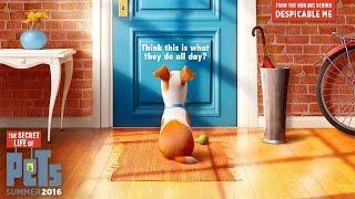 The Secret Life Of Pets - Official Teaser Trailer