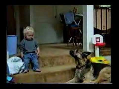 Toddler Howls With The German Shepherd