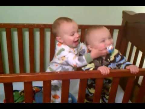 Jokes - Babies Fight Over the Pacifier