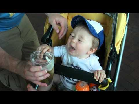 Jokes - Baby Drinks Beer
