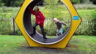 Human Sized Hamster Wheel FAIL