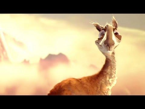 How Did The Llama Cross The Road - Funny Animated Short