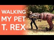 Guy Takes T-Rex For A Walk At The Park