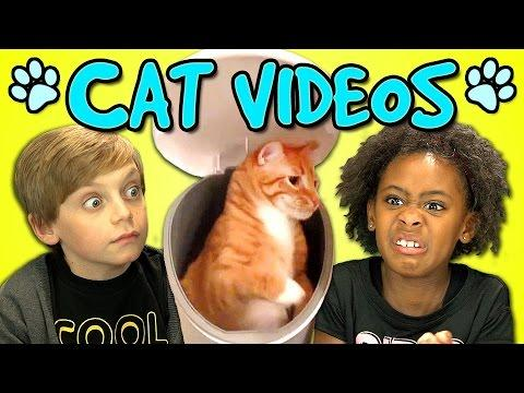 Funny Kids Reaction To Cats