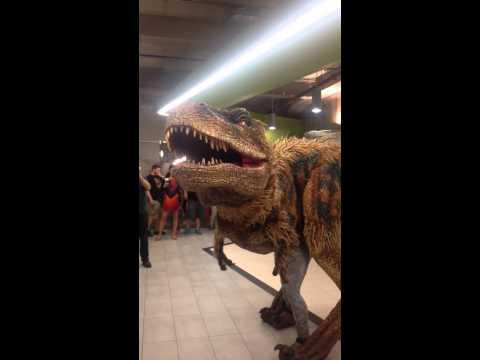 Dinosaur Scare Prank Inside The Office