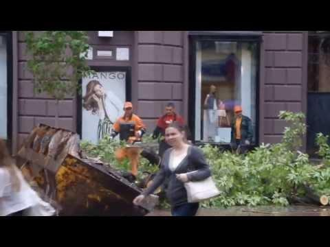 Falling Tree Narrowly Misses Lady In Russia