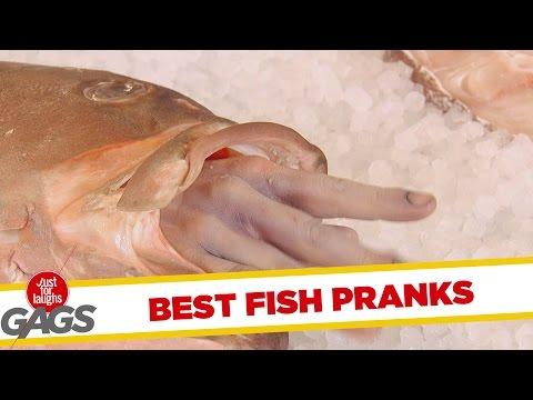 Ultimate Just For Laughs Pranks - Fish Edition