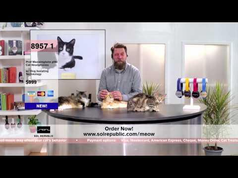Spoofs - Headphones For Your Cats