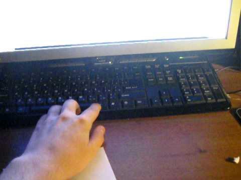 Jokes - Cat Hijacks The Computer