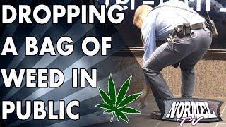 Dropping Fake Weed Bag In Public Prank