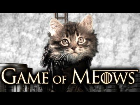 Kittens Reenact Game Of Thrones Intro
