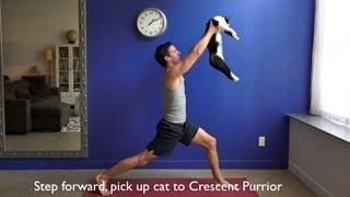 Doing Yoga Using Cats