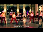 Ylvis' What Does The Fox Say Song Parody Harvard Medical Students