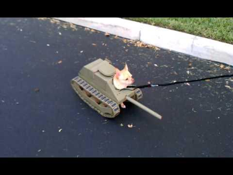 Cute - Tank Halloween Costume For Chihuahua
