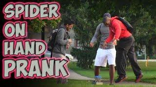 There's A Spider On Your Hand Scare Prank