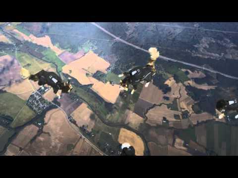Jokes - Cats Go Skydiving