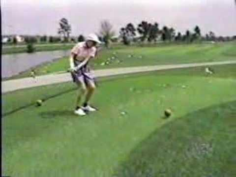 Golf - How to hit a seagull with a golf ball?