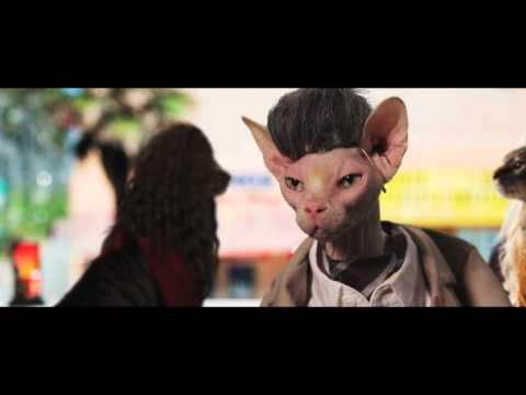 Parodies - Seven Psychopaths Movie Parody Starring Cats
